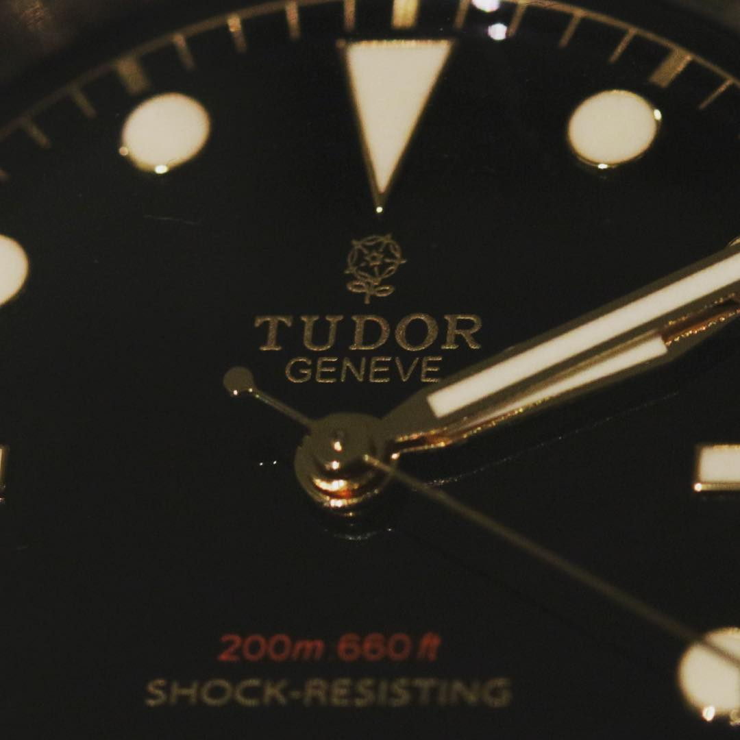 Tudor Only Watch